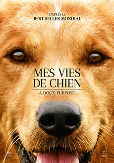 Cover - A Dog's Purpose